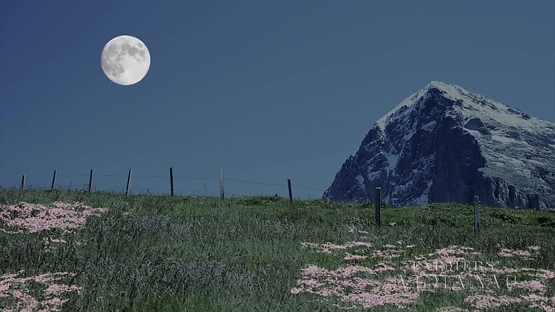 Moon and landscape